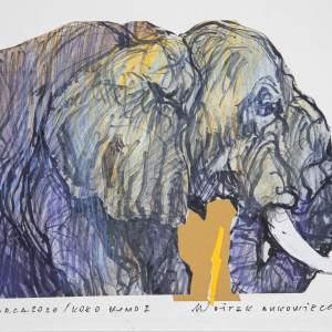 Ciemnoniebieski słoń o żółtych prześwitach widziany do połowy. Stoi bokiem.  Pomiędzy wewnętrzną stroną trąby a przodem klatki piersiowej fragment brązowego tła.  Po prawej stronie kartki tekst.