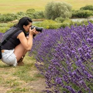 Brunetka w czarnej koszulce i krótkich dżinsowych spodenkach przykucnęła i robi zdjęcia krzewom lawendy.