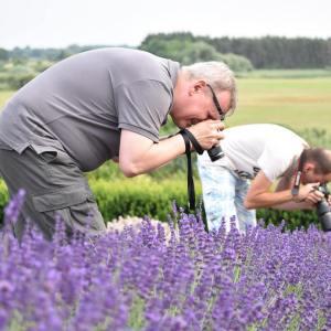Dwóch fotografów pochyla się z obiektywami nad kwiatami lawendy.