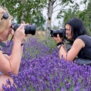 Po prawej i po lewej kobiety z aparatami przy twarzach. Pośrodku krzewy lawendy, w tle brzoza.