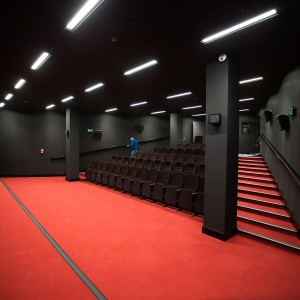 Mała sala kinowa. Widok z rogu sceny. Czerwona wykładzina. Czarne ściany. Brązowe rzędy foteli ułożone rosnąco ku górze.