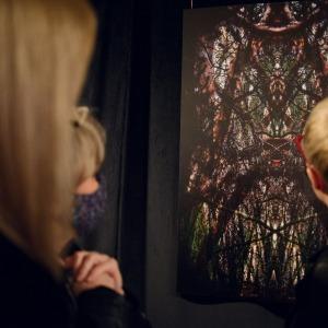 Trzy kobiety stoją tyłem do obiektywu. Oglądają zawieszoną pod sufitem fotografię, która przedstawia splecione ze sobą gałęzie i konary drzew tworzące korytarz..