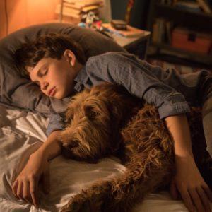 Kadr z filmu Jak rozmawiac z psem
