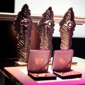 Na zdjęciu statuetki Ogólnopolskiego Konkursu Filmów Niezależnych